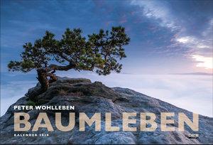 Baumleben 2019