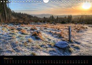 Das Sauerland voller Lichtblicke (Wandkalender 2019 DIN A4 quer)