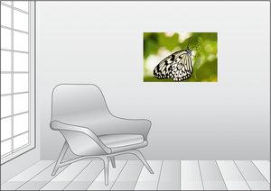 Premium Textil-Leinwand 75 cm x 50 cm quer Weiße Baumnymphe