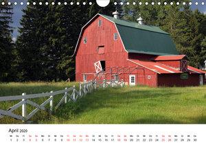 Red Barns - rote Scheunen (Wandkalender 2020 DIN A4 quer)