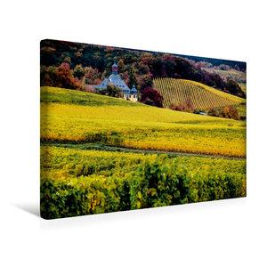 Premium Textil-Leinwand 45 cm x 30 cm quer Rheingau - Rieslingla