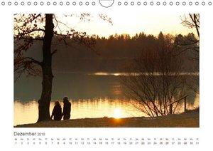 Unterwegs im Landsberger Wildpark (Wandkalender 2019 DIN A4 quer