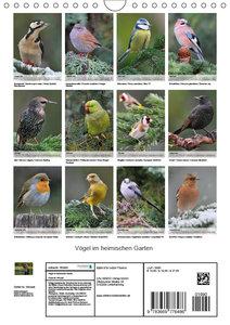 Vögel im heimischen Garten (Wandkalender 2019 DIN A4 hoch)