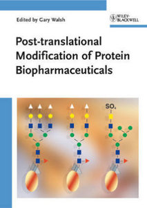 Post-translational Modification of Protein Biopharmaceuticals