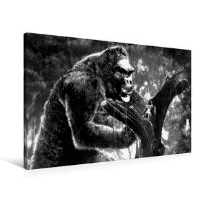 Premium Textil-Leinwand 90 cm x 60 cm quer King Kong