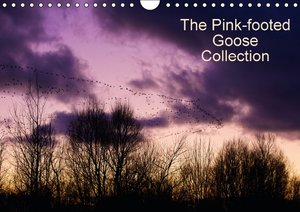 The Pinkfoot Goose Collection (Wall Calendar 2015 DIN A4 Landsca