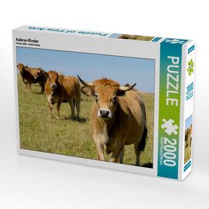 Aubrac-Rinder 2000 Teile Puzzle quer