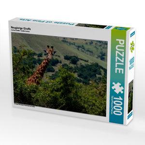 Neugierige Giraffe 1000 Teile Puzzle quer