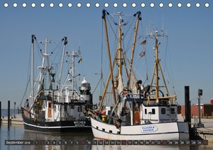 Hafenkulissen - Impressionen aus der Hafenwelt