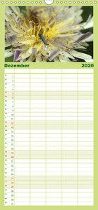 Un-Kraut - Familienplaner hoch (Wandkalender 2020 , 21 cm x 45 c
