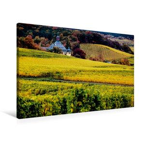 Premium Textil-Leinwand 90 cm x 60 cm quer Rheingau - Rieslingla