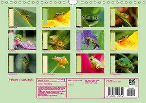 Vorsicht: Froschkönig (Wandkalender 2019 DIN A4 quer)