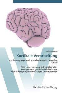Kortikale Verarbeitung