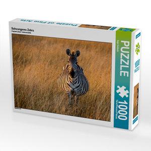 Schwangeres Zebra 1000 Teile Puzzle quer