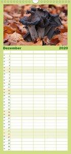 Pilzkalender - Familienplaner hoch