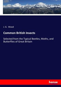 Common British Insects
