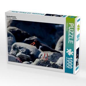 Austernfischer 1000 Teile Puzzle quer