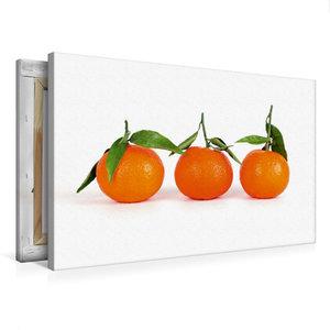 Premium Textil-Leinwand 75 cm x 50 cm quer Drei Mandarinen
