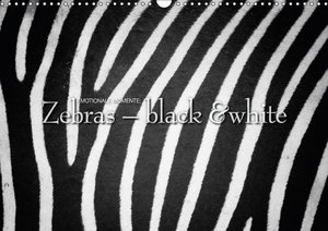 Emotionale Momente: Zebras - black & white.
