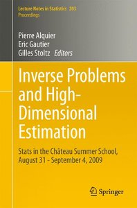 Inverse Problems and High-Dimensional Estimation