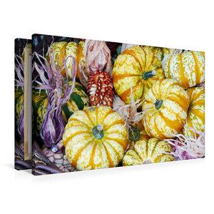 Premium Textil-Leinwand 90 cm x 60 cm quer Kürbisse