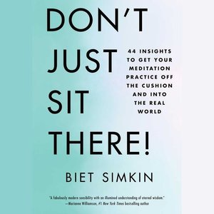 Don\'t Just Sit There!: 44 Insights to Get Your Meditation Pract