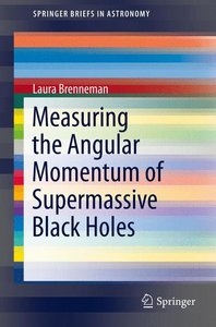 Measuring the Angular Momentum of Supermassive Black Holes