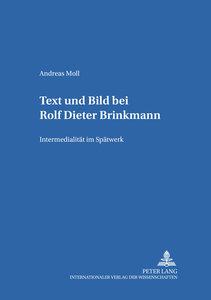 Text und Bild bei Rolf Dieter Brinkmann
