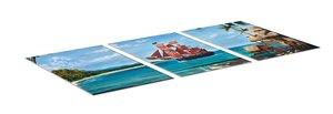 Rio Grande Games 22501406 - Dominion Erweiterung: Seaside