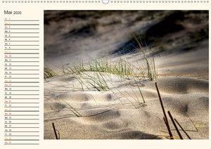 Nordsee-Dünen - Geburtstagskalender (Wandkalender 2020 DIN A2 qu