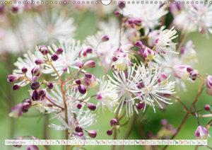 Blüteneleganz in Weiß (Wandkalender 2019 DIN A3 quer)