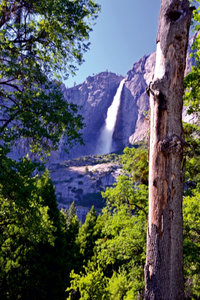 Premium Textil-Leinwand 80 cm x 120 cm hoch Yosemite National P