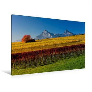 Premium Textil-Leinwand 120 cm x 80 cm quer Rebberge bei Jenins