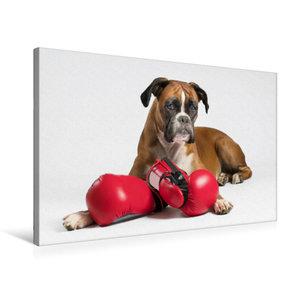 Premium Textil-Leinwand 75 cm x 50 cm quer Deutsche Boxer halten