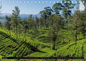 Sri Lanka, eine Reise über die Insel der King Coconut (Tischkale