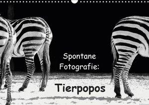 Spontane Fotografie: Tierpopos (Wandkalender 2019 DIN A3 quer)