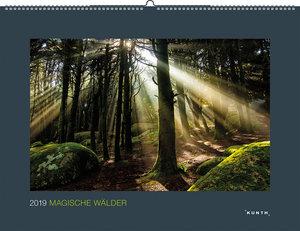 Magische Wälder 2019