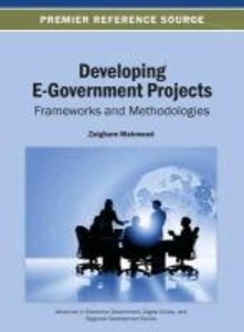 Developing E-Government Projects: Frameworks and Methodologies