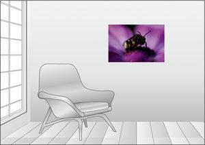 Premium Textil-Leinwand 75 cm x 50 cm quer Junge Biene im Blüten