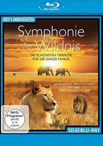 Symphonie der Wildnis