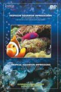 Tropische Aquarium Impressione