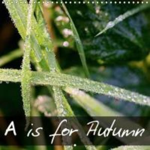 A is for Autumn (Wall Calendar 2015 300 × 300 mm Square)