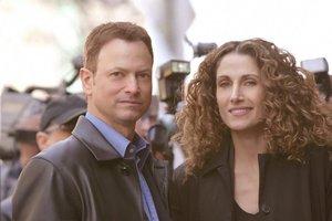 CSI: NY-Season 8