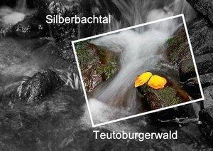 Silberbachtal Teutoburgerwald (Posterbuch DIN A2 quer)