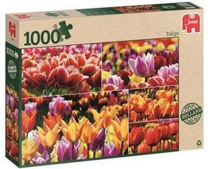 Jumbo Spiele - Generische Puzzle - Holland Tulips