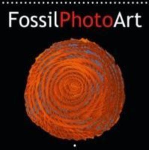 FossilPhotoArt (Calendrier mural 2015 300 × 300 mm Square)