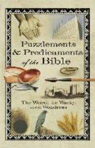 Puzzlements & Predicaments of the Bible