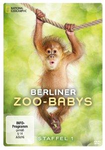 Berliner Zoo-Babys Staffel 1