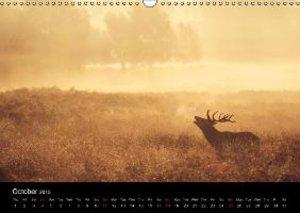 WILD DEER (Wall Calendar 2015 DIN A3 Landscape)