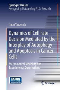 Dynamics of Cell Fate Decision Mediated by the Interplay of Auto
